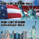 【外貨建(終身・定期払)】ジブラルタ生命 「米ドル建終身保険」5つの特徴と注意点
